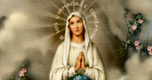 Immaculate conception halo